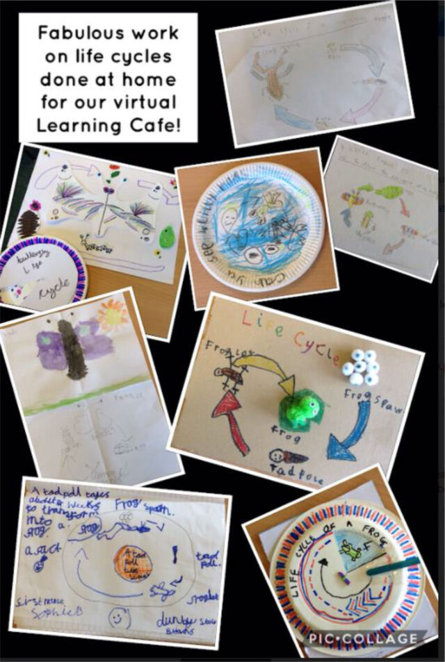 Learing Cafe Information May 2021 3